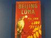 Ma Jian: Beijing Coma